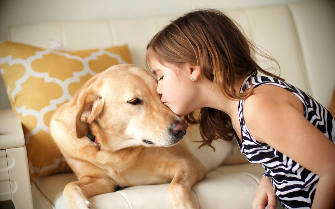 A Trust for Fluffy or Fido? Why Every Pet Parent Needs to Consider a Pet Trust Today